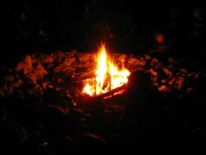 Cub Scouts say the damnedest things when you get them around a campfire.