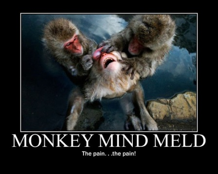 Monkey minds to your mind, monkey thoughts to your thoughts